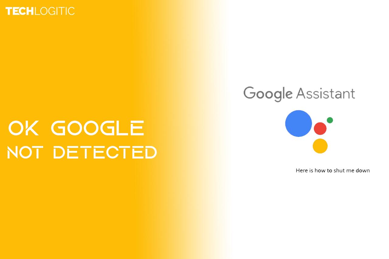 ok google not detected