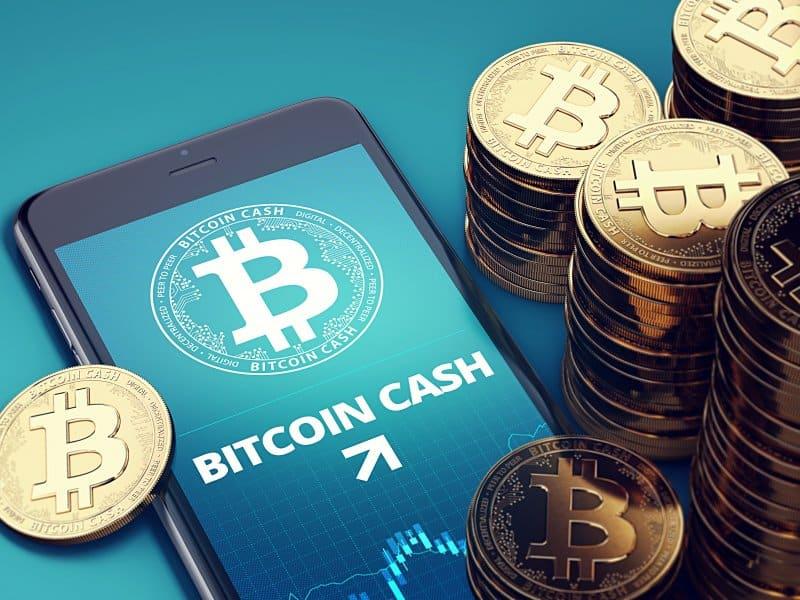 Bitcoin Cash Record vs. Bitcoin Days