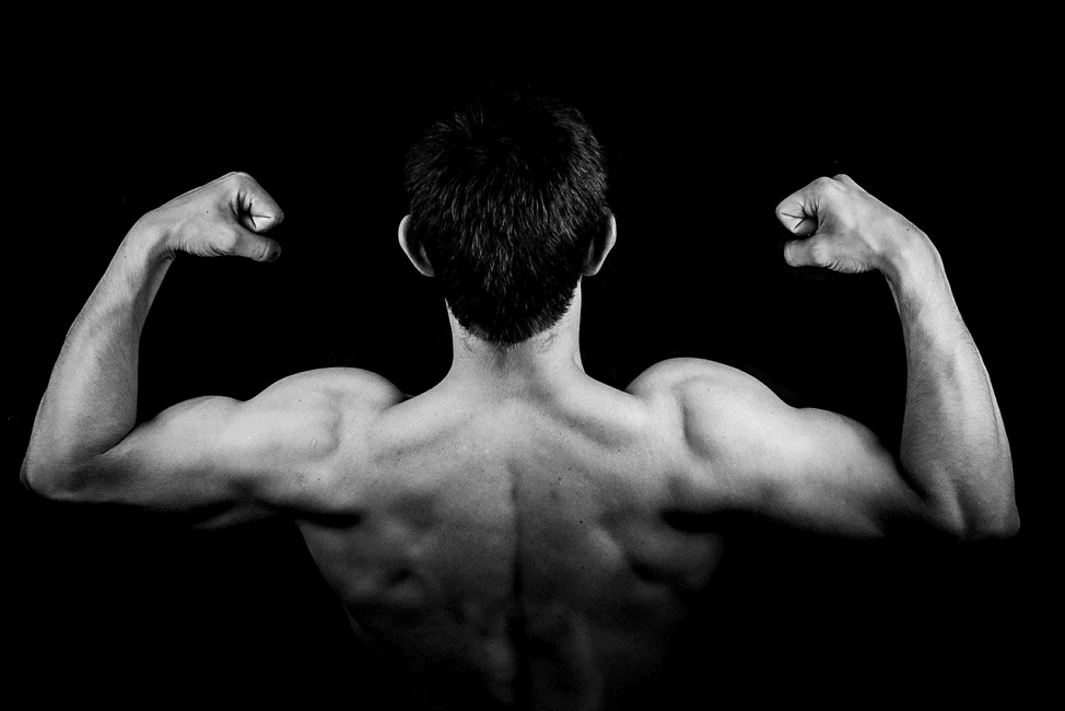 How To Increase Your Muscle Mass In a Short Period?