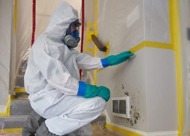 Good Mold Remediation Company
