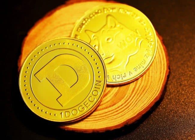 New Floki Crypto Coin